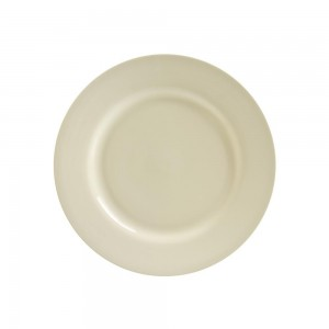 Silver Double Line Dinner Plate